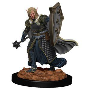 D&D: IR: Prem: Elf Male Cleric
