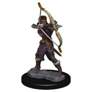 D&D: IR: Prem: Female Elf Ranger