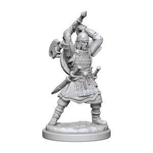 D&D: NMU: Human Barbarian Male W13