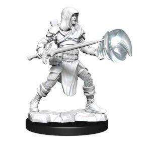 D&D: NMU: Fighter & Wizard Male W13