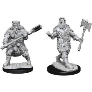 D&D: NMU: Human Barbarian Male W14