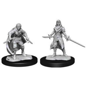D&D: NMU: Half-Elf Rogue Female W14