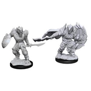 Dragonborn Fighter Male W15